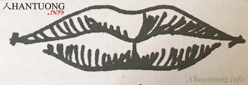 Hình dáng tướng miệng chữ Tứ