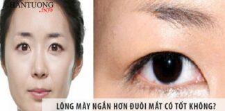 Lông mày ngắn hơn đuôi mắt có tốt không?