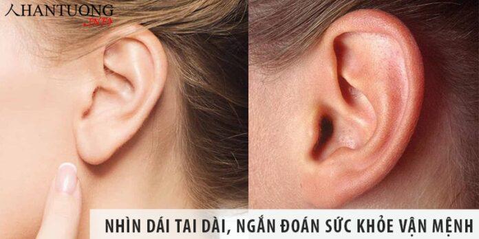 Nhìn dái tai dài, ngắn đoán sức khỏe vận mệnh con người